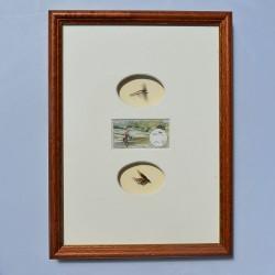 3D obraz Mušky pre rybára 20,7 x 28 cm
