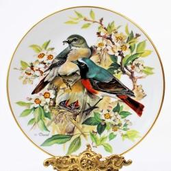 Porcelánový tanier Blaumeise, Alt Tirschenreuth 22 karát zlato, 19,5 cm