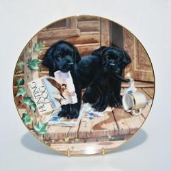 Porcelánový tanier  Double Take, River Shore 21,5 cm