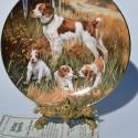 Porcelánový tanier Springer Spaniels, Hamilton Collection 21,5 cm + certifikát