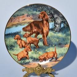 Porcelánový tanier Pointers, Hamilton Collection 21,5 cm + certifikát
