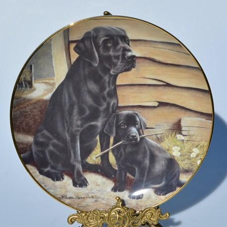 Porcelánový tanier Like Father, Like Son, Hamilton Collection 21,5 cm