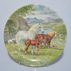 Porcelánový tanier Kone 20,3 cm