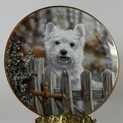 Porcelánový tanier pes2
