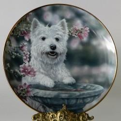 Porcelánový tanier pes3