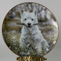 Porcelánový tanier pes4