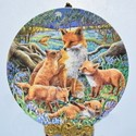 Divé zvery - jeleň, diviak, líška, medveď,...